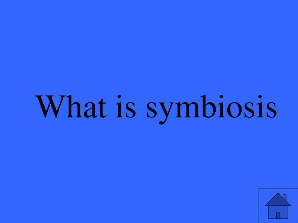 What is symbiosis