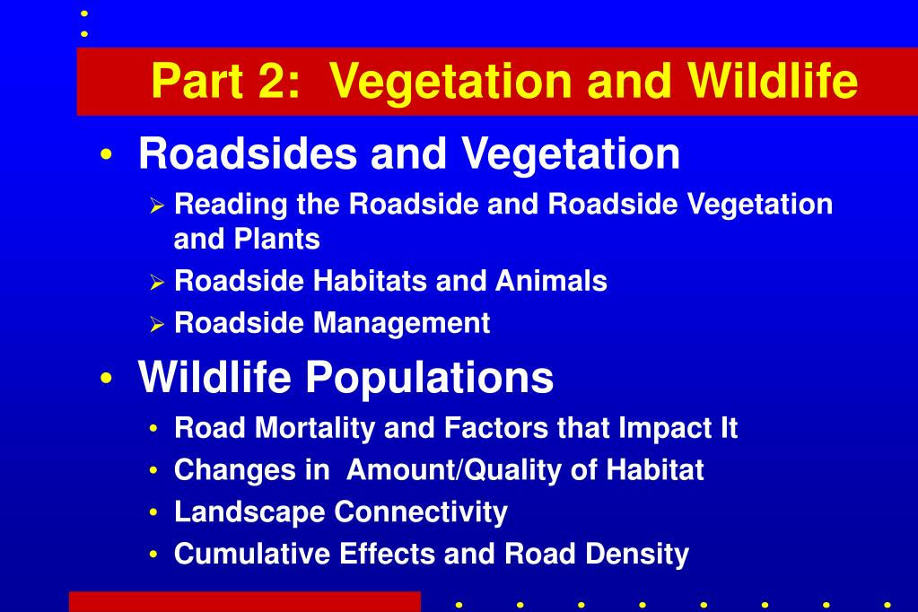 Part 2:  Vegetation and Wildlife