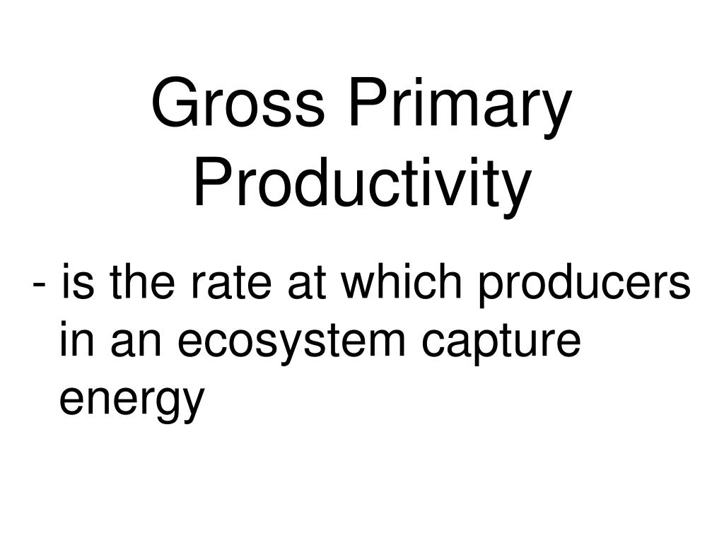 Gross Primary Productivity