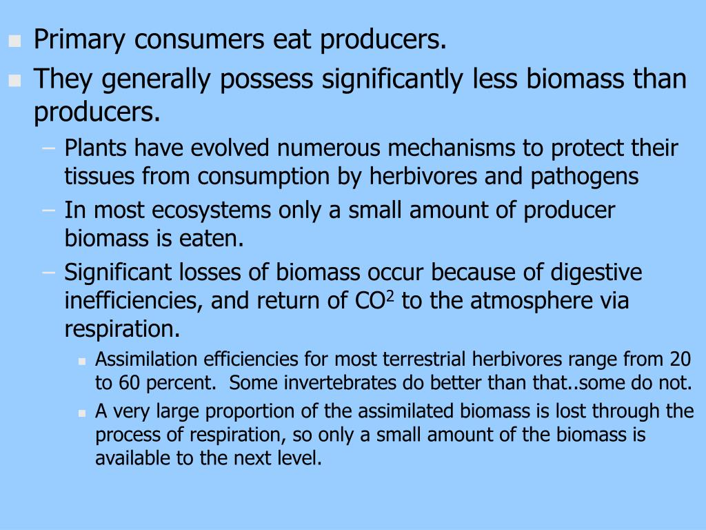 Primary consumers eat producers.