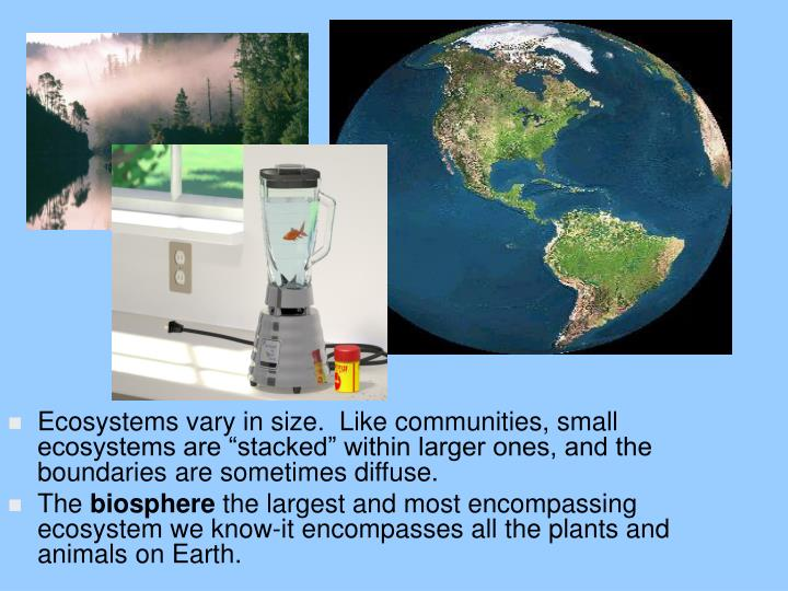"Ecosystems vary in size.  Like communities, small ecosystems are ""stacked"" within larger ones, a..."
