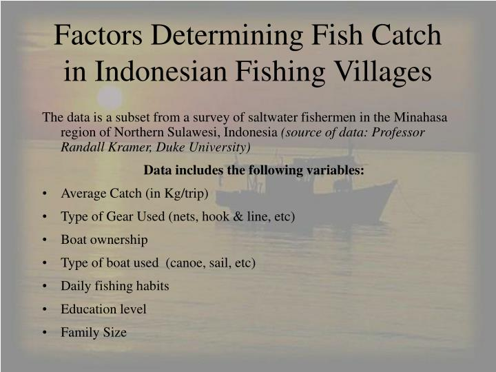 Factors determining fish catch in indonesian fishing villages l.jpg