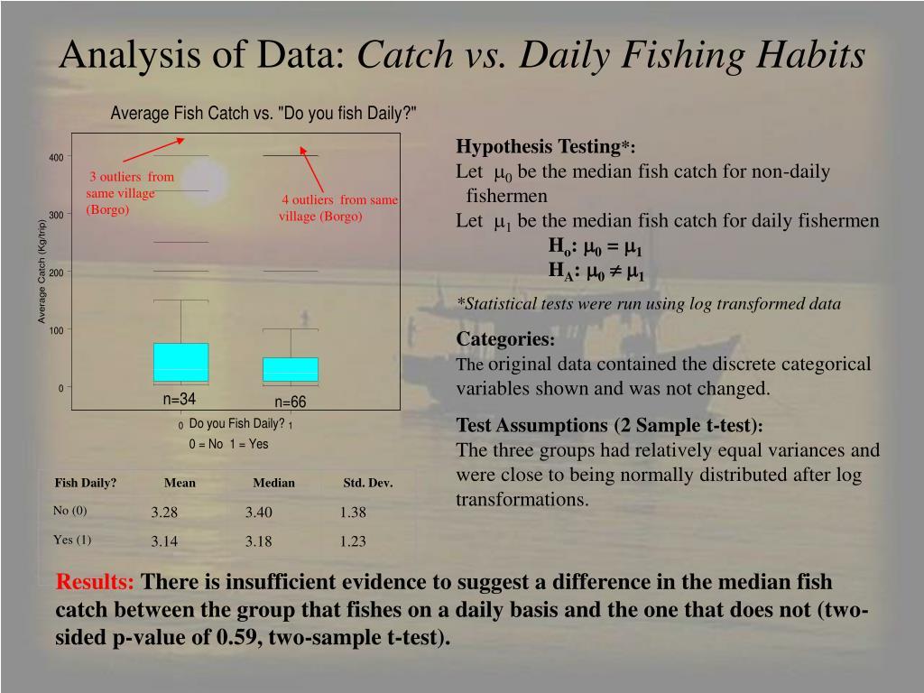 Fish Daily?