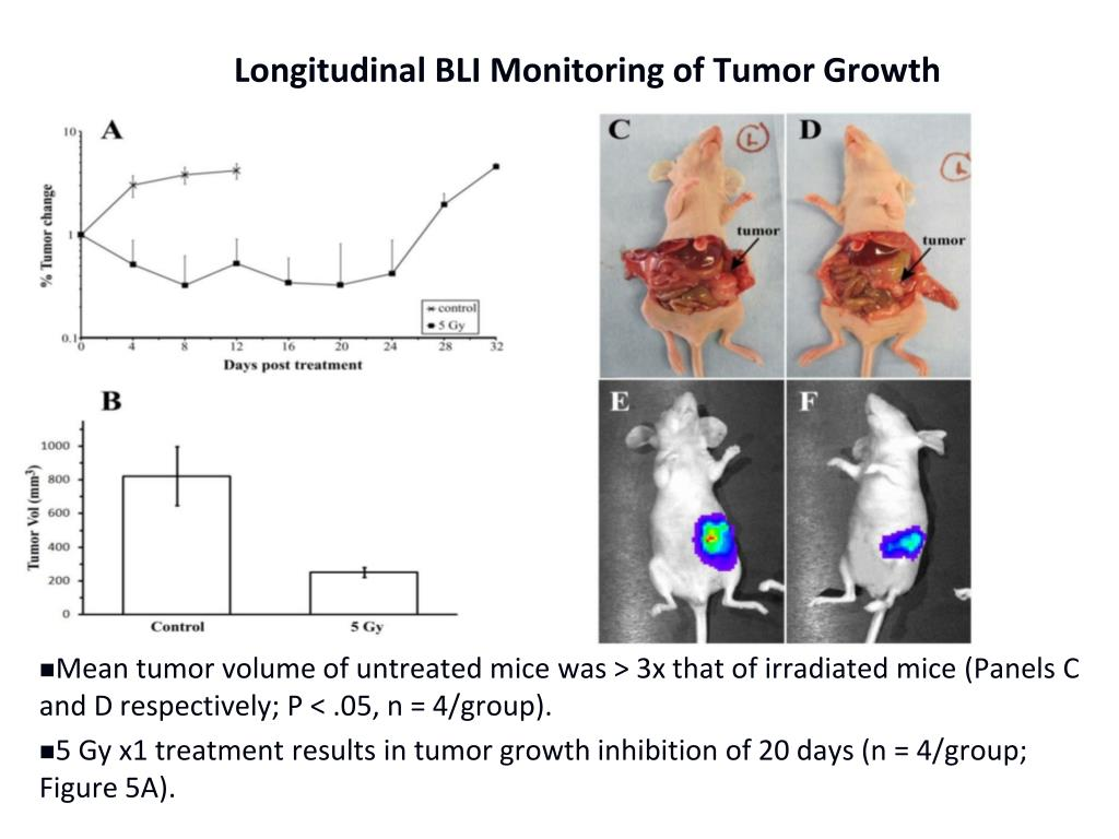 Longitudinal BLI Monitoring of Tumor Growth