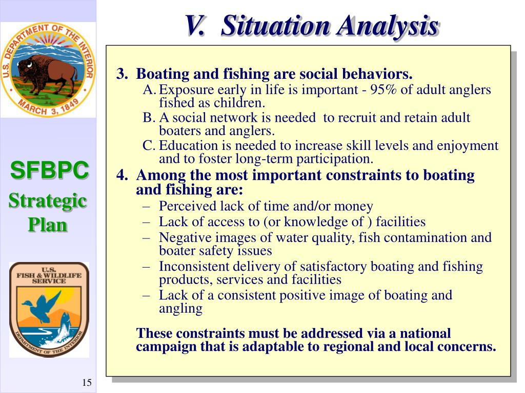 V.  Situation Analysis