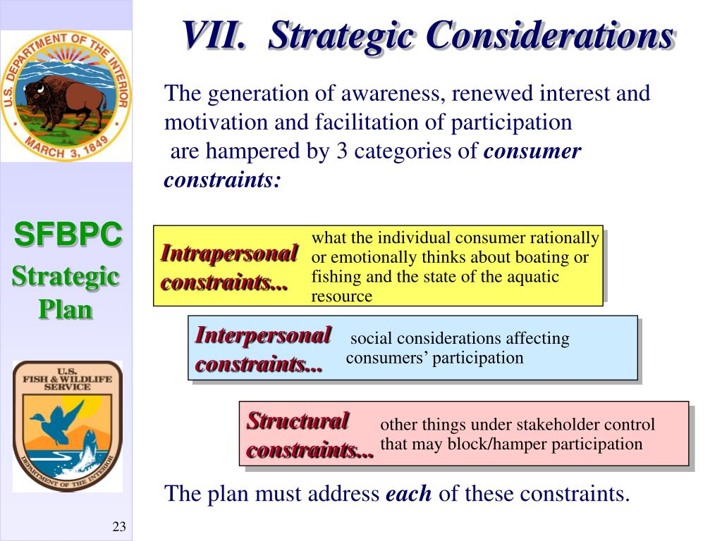 VII.  Strategic Considerations