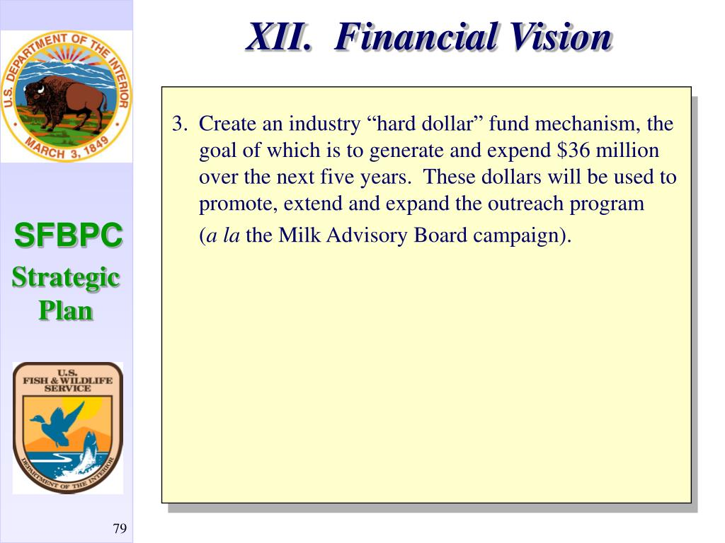 XII.  Financial Vision