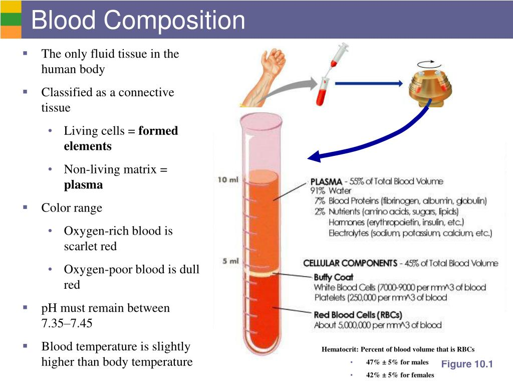 Blood Composition