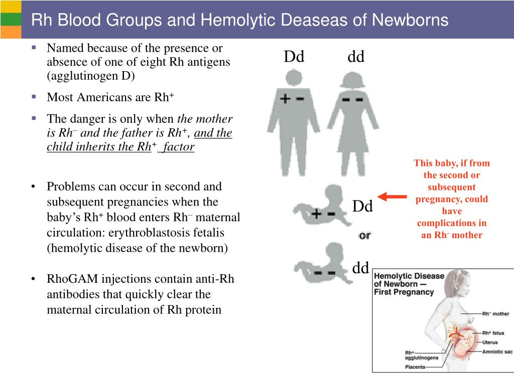 Rh Blood Groups and Hemolytic Deaseas of Newborns