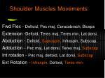 shoulder muscles movements