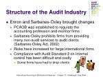 structure of the audit industry13