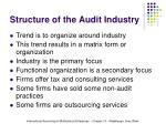 structure of the audit industry14