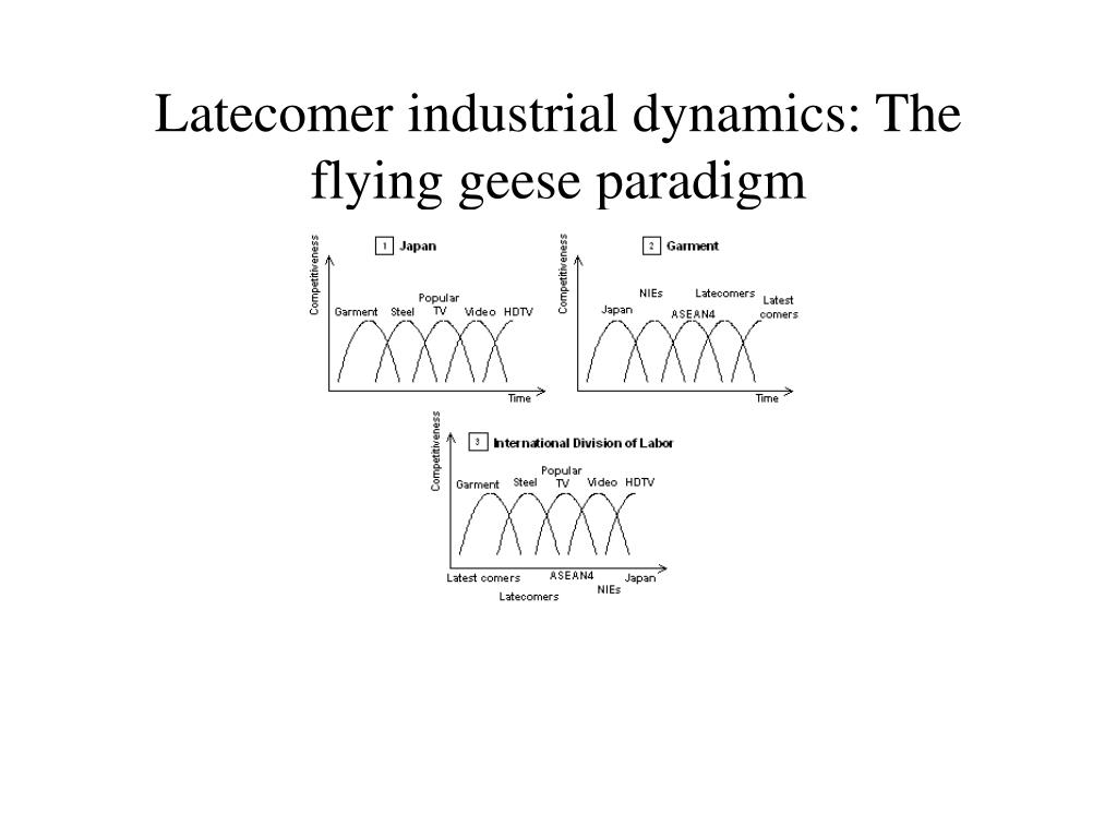 Latecomer industrial dynamics: The flying geese paradigm