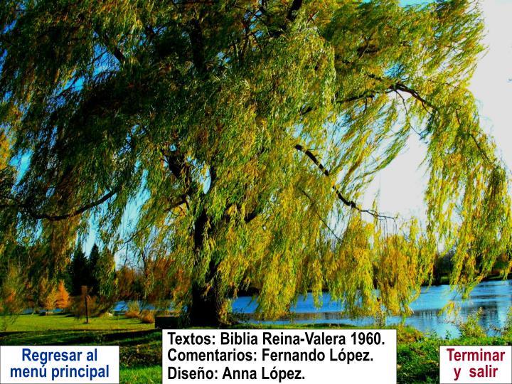 Textos: Biblia Reina-Valera 1960.