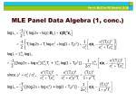 mle panel data algebra 1 conc