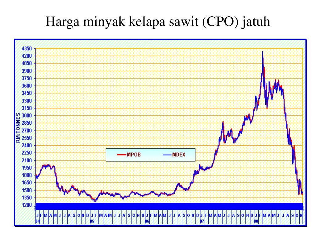Harga minyak kelapa sawit (CPO) jatuh