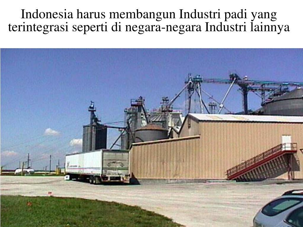 Indonesia harus membangun Industri padi yang terintegrasi seperti di negara-negara Industri lainnya