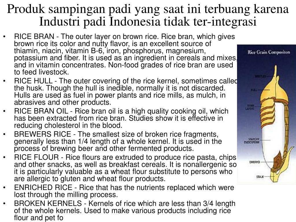 Produk sampingan padi yang saat ini terbuang karena Industri padi Indonesia tidak ter-integrasi