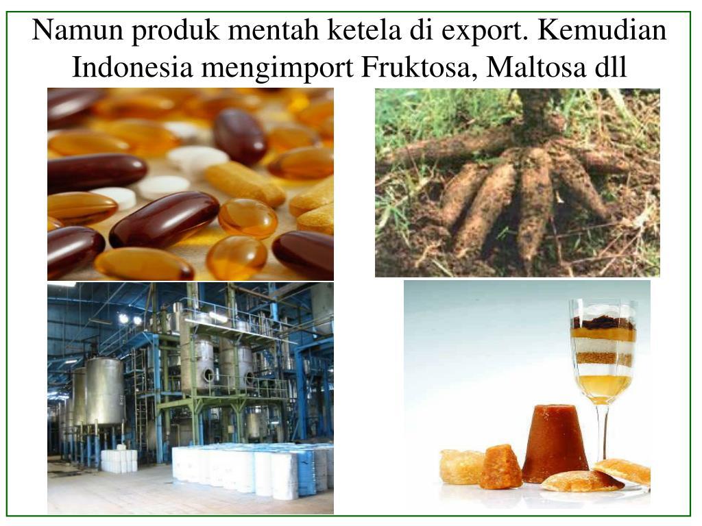 Namun produk mentah ketela di export. Kemudian Indonesia mengimport Fruktosa, Maltosa dll