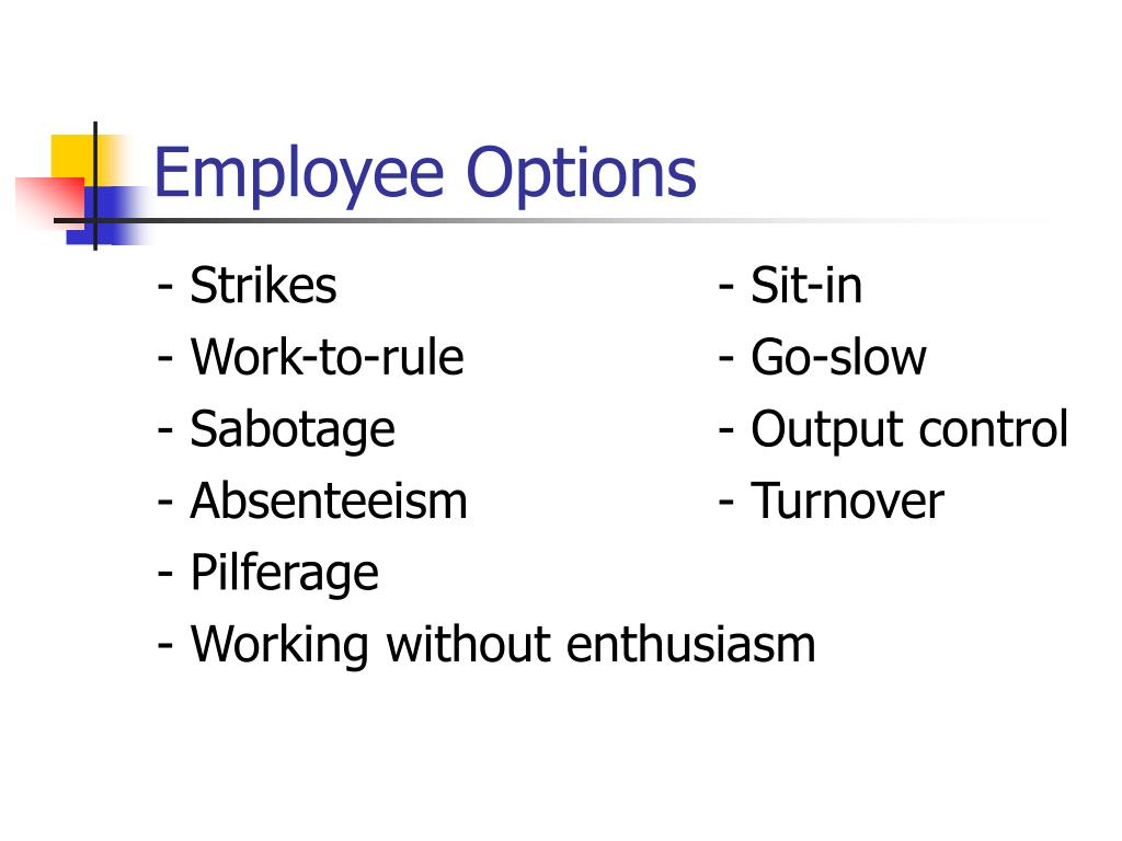 Employee Options