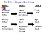 third party dispute resolution