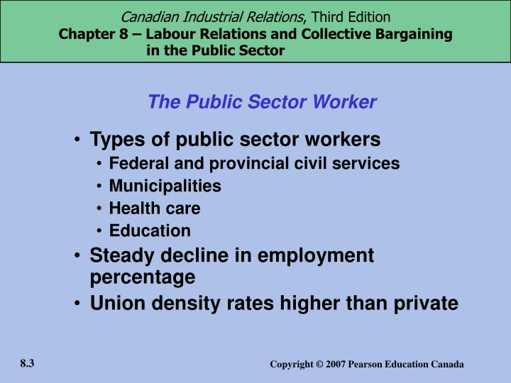 The public sector worker