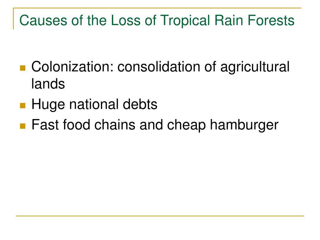 Causes of the Loss of Tropical Rain Forests