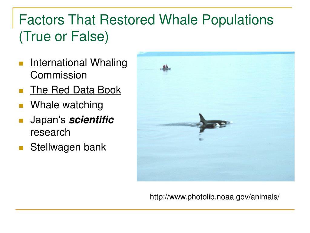 Factors That Restored Whale Populations (True or False)