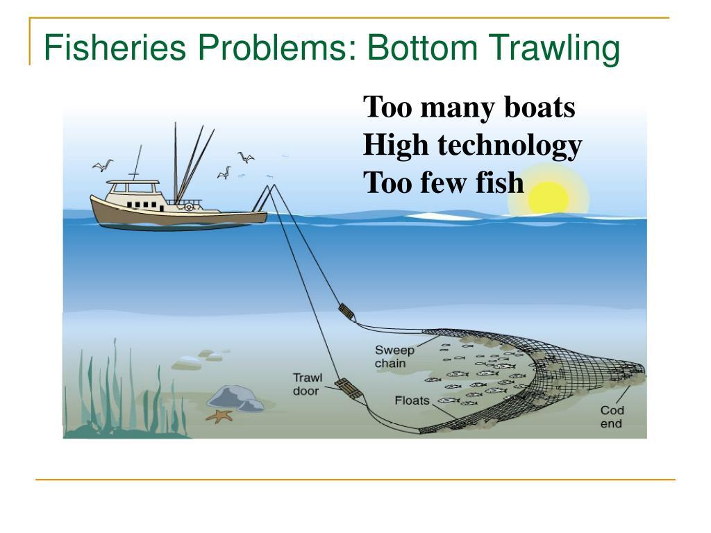 Fisheries Problems: Bottom Trawling