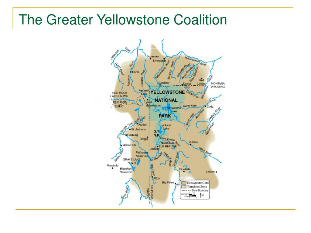 The Greater Yellowstone Coalition