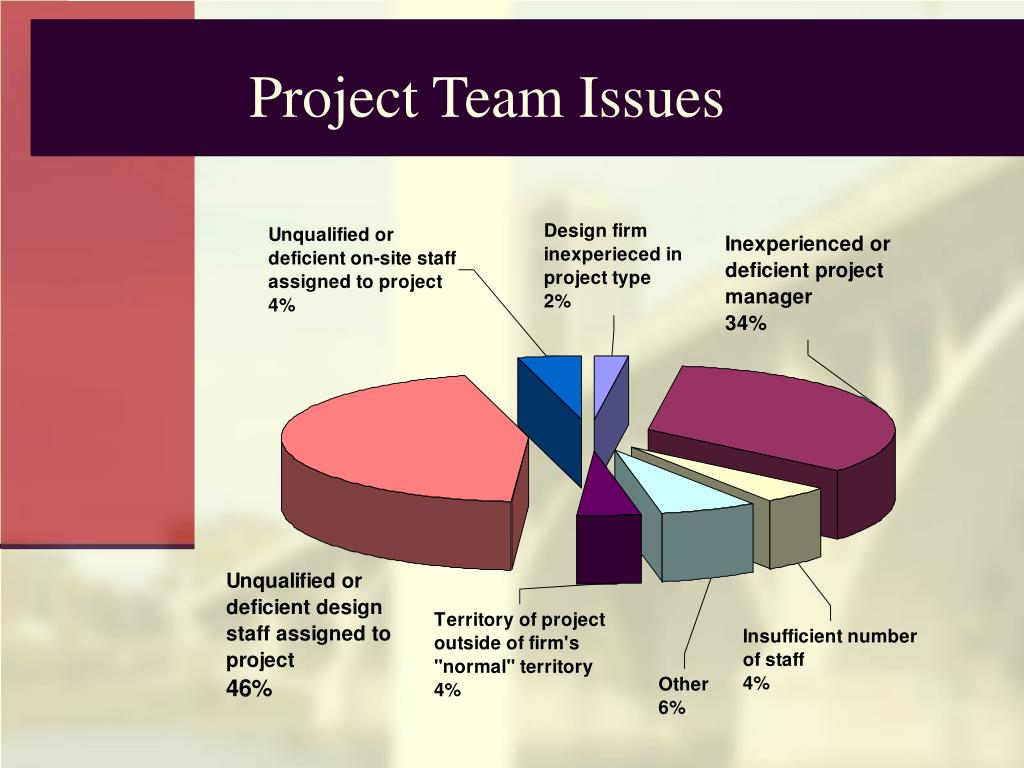 Project Team Issues