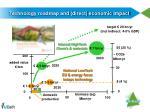 technology roadmap and direct economic impact