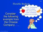 flexible budgets3