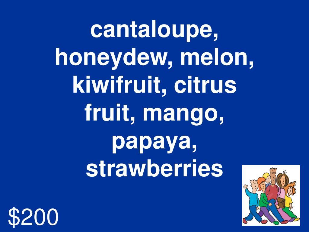 cantaloupe, honeydew, melon, kiwifruit, citrus fruit, mango, papaya, strawberries