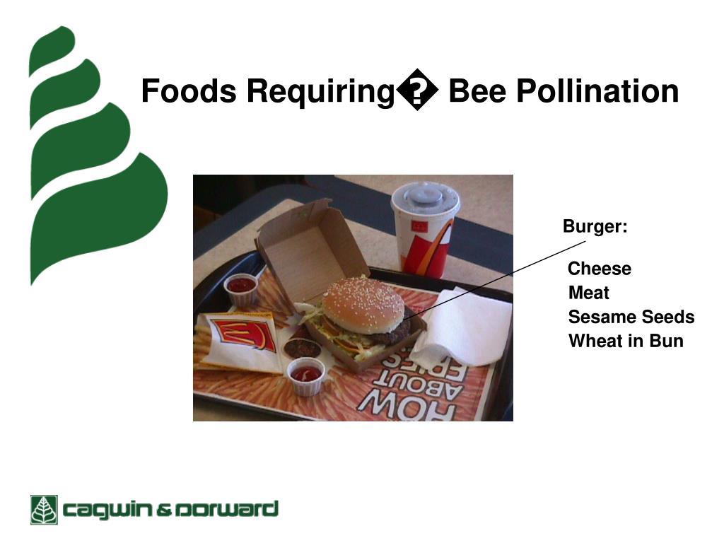 Foods Requiring