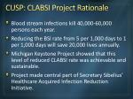 cusp clabsi project rationale
