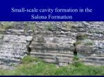 small scale cavity formation in the salona formation