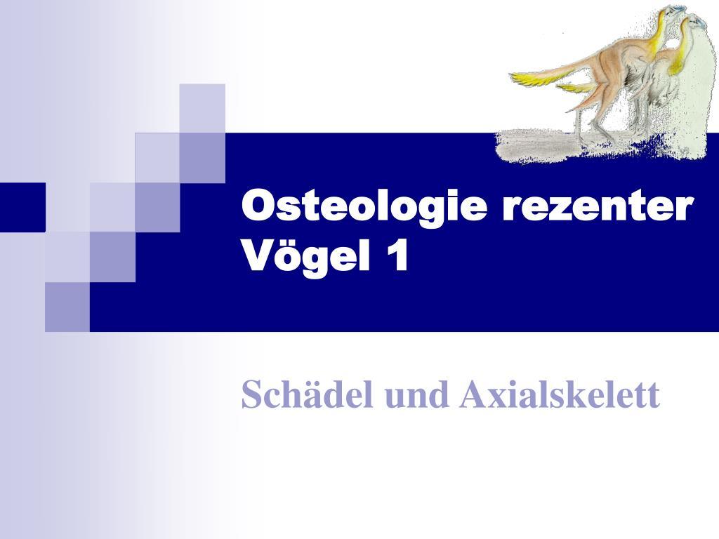 osteologie rezenter v gel 1