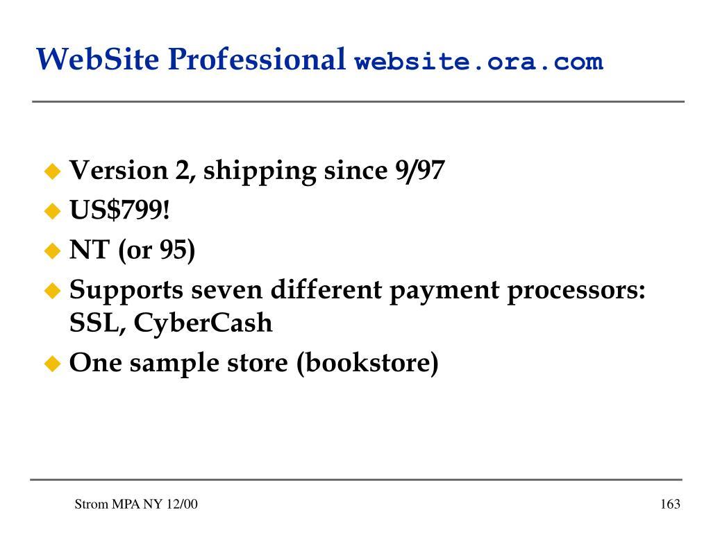 WebSite Professional