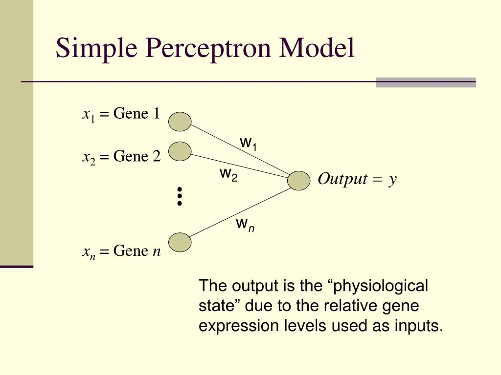Simple Perceptron Model