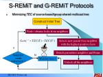 s remit and g remit protocols