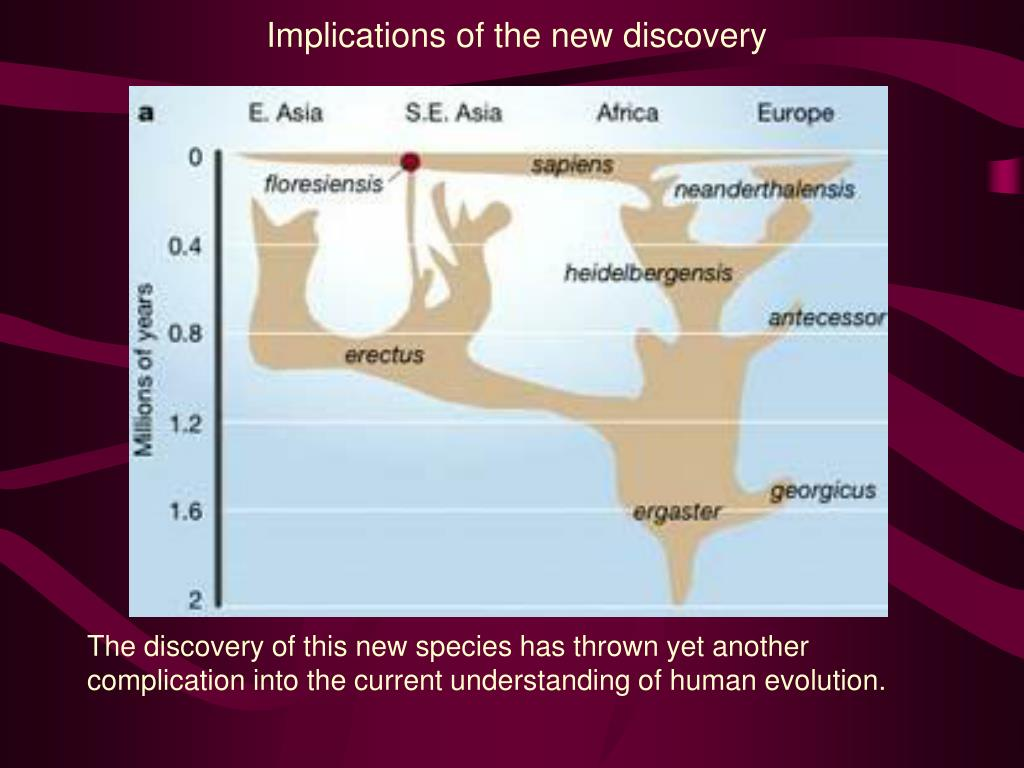 Implications of the new discovery