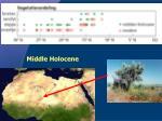 het midden holoceen
