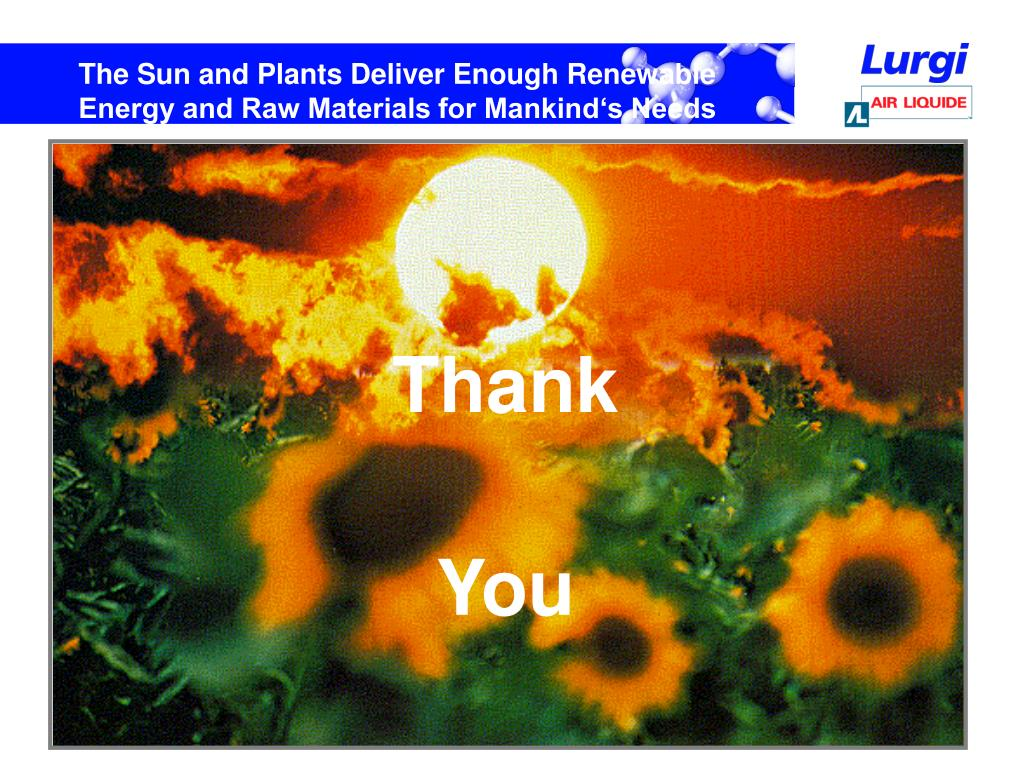 The Sun and Plants Deliver Enough Renewable Energy and Raw Materials for Mankind's Needs
