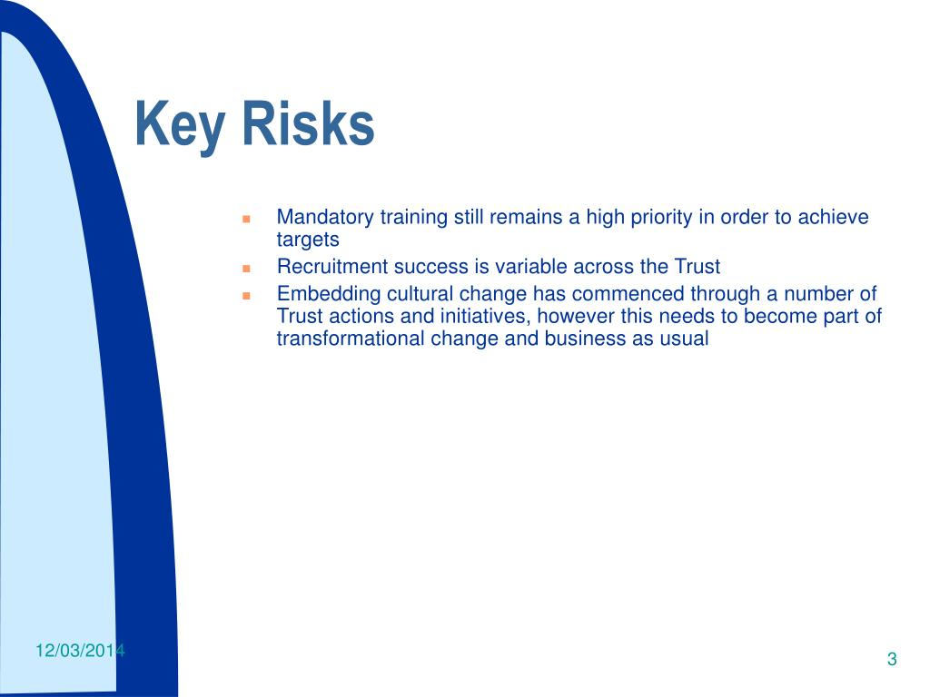 Key Risks