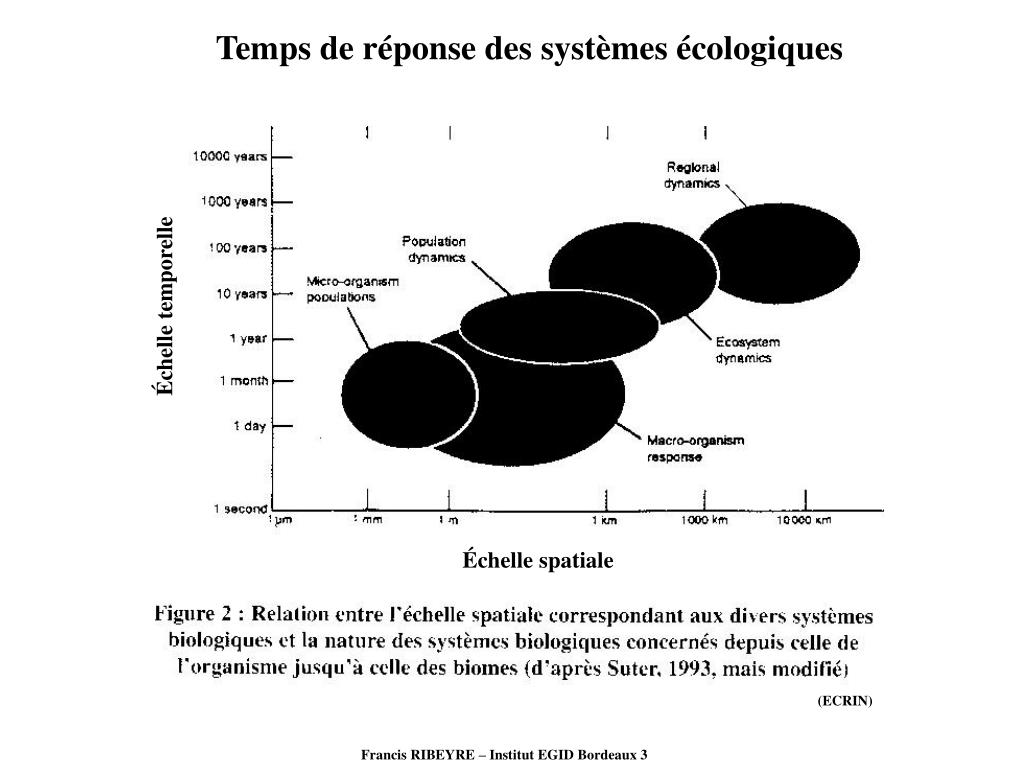 Temps de réponse des systèmes écologiques