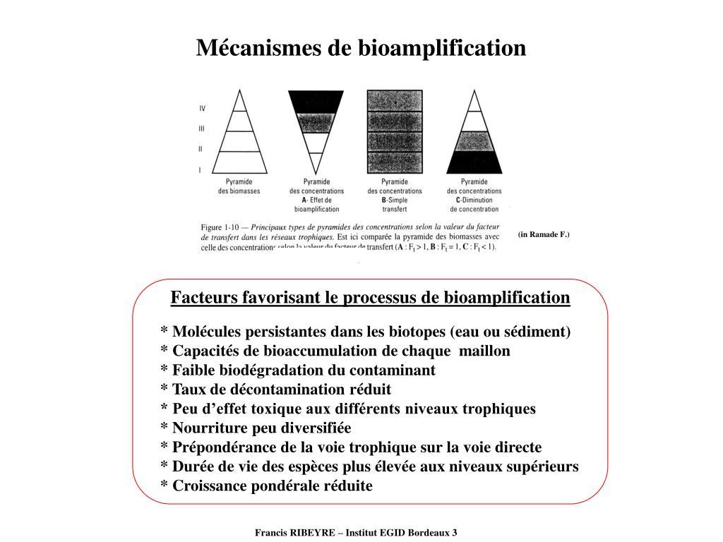 Mécanismes de bioamplification