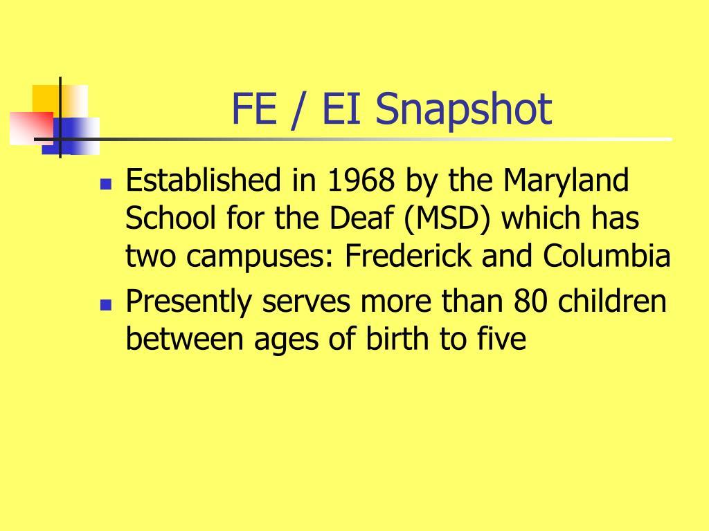 FE / EI Snapshot