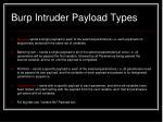 burp intruder payload types