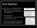 burp mapping14
